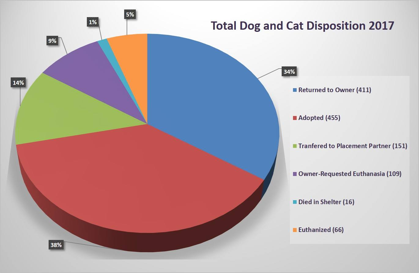 Pie chart showing disposition of cats and dogs at the Hurst Animal Shelter for the year of 2017