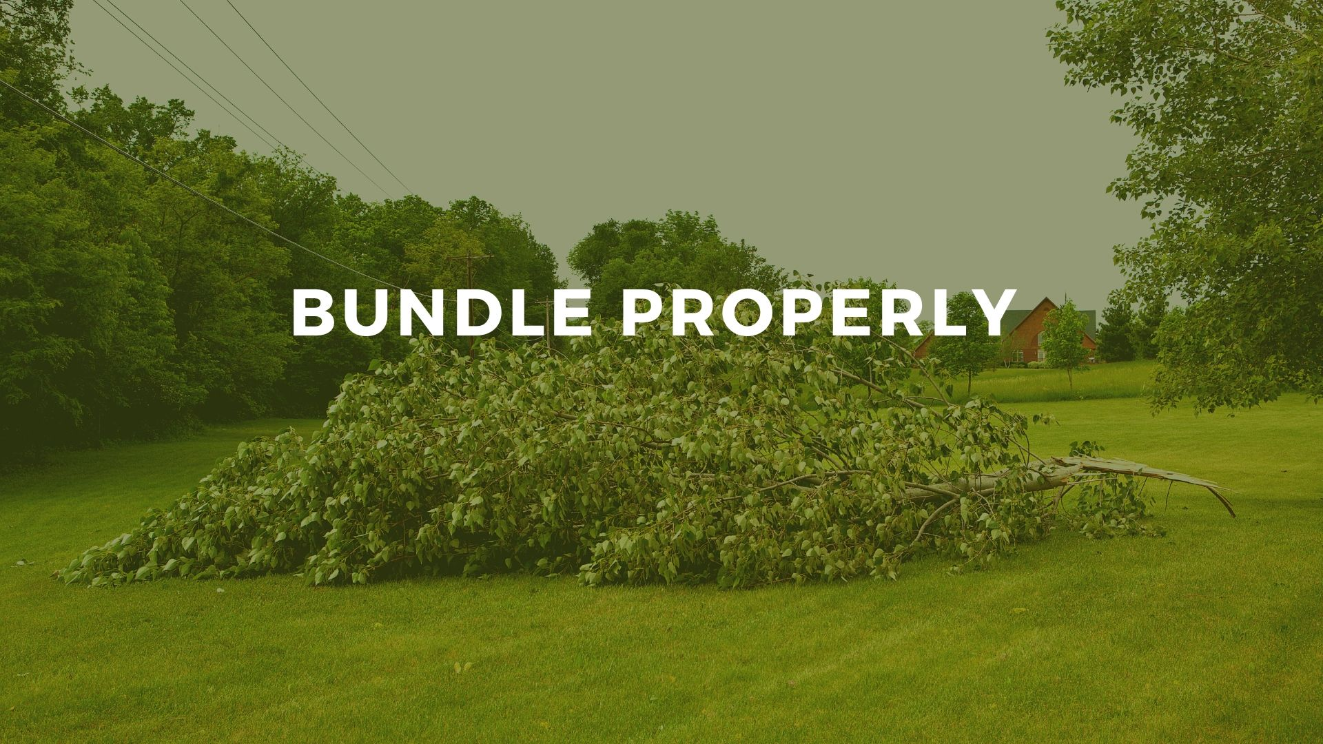 Hurst strong winds tree limb bundle requirements for pickup by Republic Services